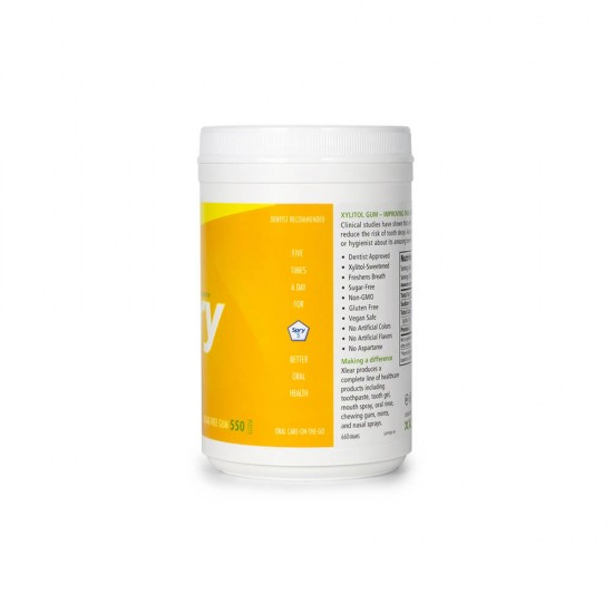 Natural Fruit Xylitol Gum - 550ct